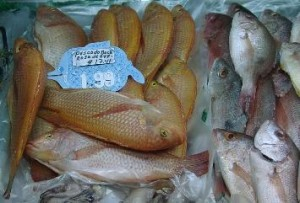 supermarkettilapia 300x203 The Basics of Marketing Farmed Tilapia